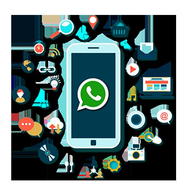 کاتالوگ محصولات و خدمات در واتساپ
